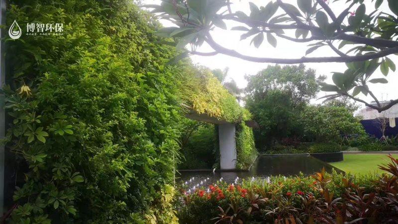 模块式种植盒 垂直绿化 立体绿化 生态植物墙,智能植物墙,植物墙种植盒,博智环保示例图8