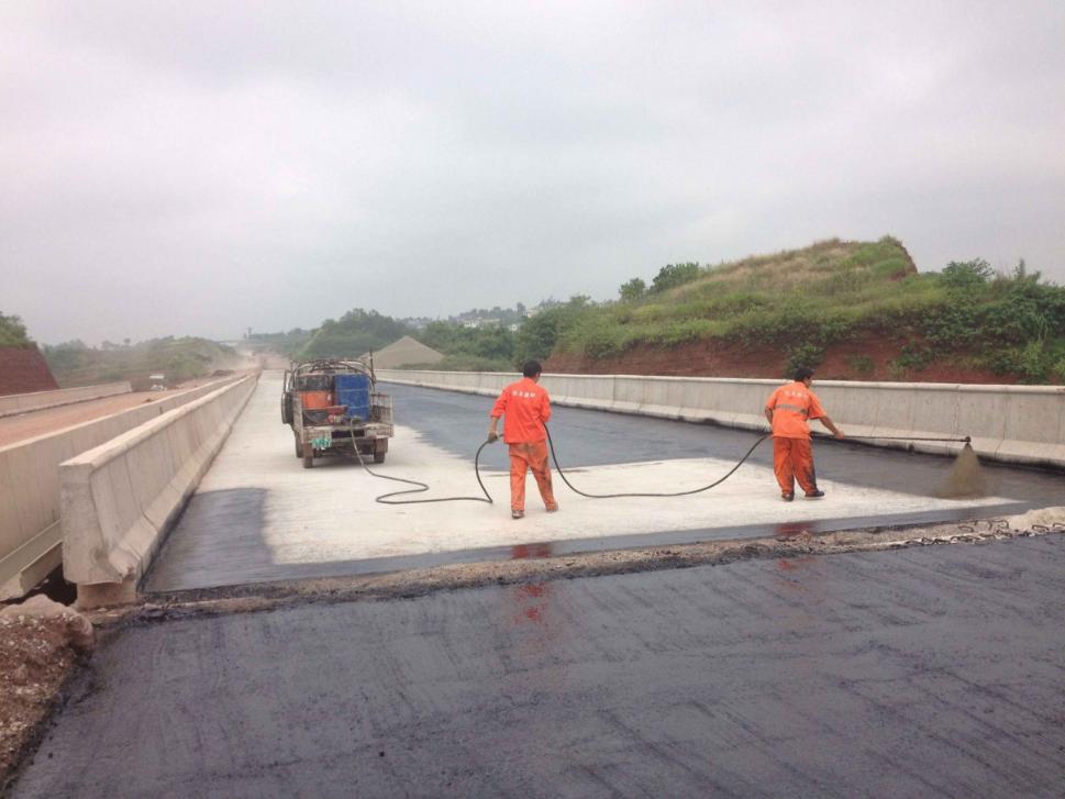 fyt-1桥面路面防水涂料 《建材行业JC/T9752005》指标示例图8