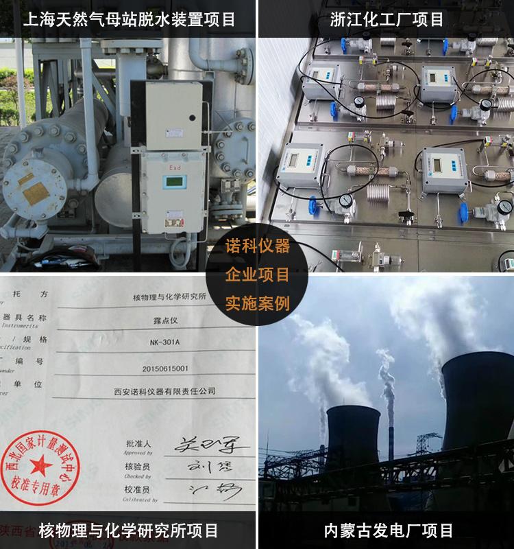 便携式氢分析仪 氢气检测仪 氧氮氢分析仪 诺科仪器NK-201A示例图2