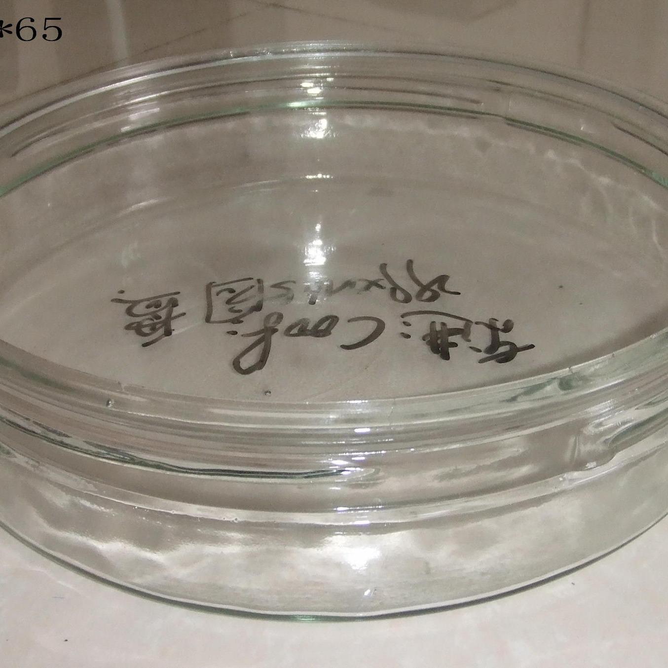 麗瑩專業定制各種高品質壓吹玻璃燈罩清光玻璃燈罩